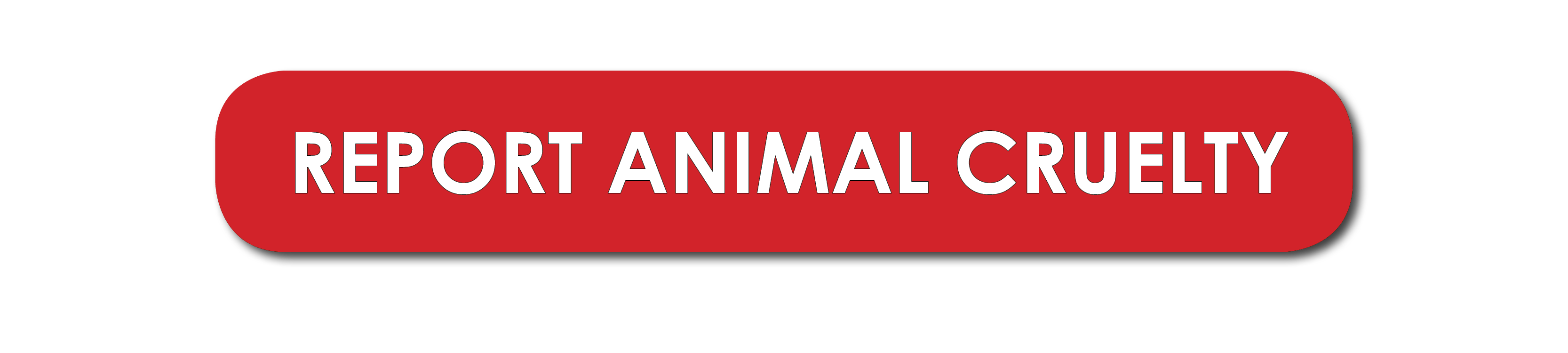Click here to report animal cruelty