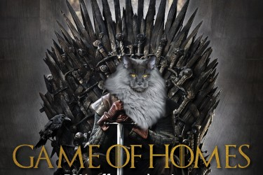 Game of Homes adoption promotion